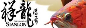 中山水族批发市场|中山水族馆|中山龙鱼